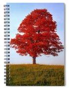 Autumn Flame Spiral Notebook