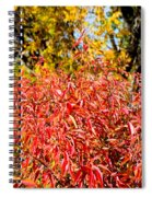 Autumn Flames Spiral Notebook