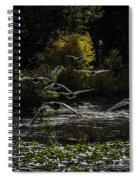 Autumn Flight Spiral Notebook