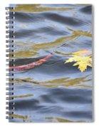 Autumn Floats Away Spiral Notebook