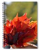 Autumn Flower Spiral Notebook
