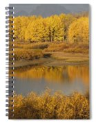 Autumn Foliage Surrounds A Pool In The Spiral Notebook