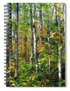 Autumn Forest Detail Spiral Notebook