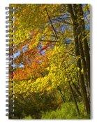 Autumn Forest Scene In West Michigan Spiral Notebook