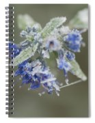 Autumn Frost Spiral Notebook