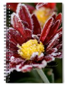 Autumn Frost Spiral Notebook