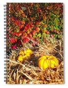 Autumn Garden Spiral Notebook