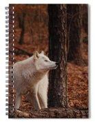 Autumn Gaze Spiral Notebook