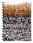 Autumn Geometry By Jrr Spiral Notebook