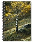 Autumn Glow - Yellowstone Spiral Notebook