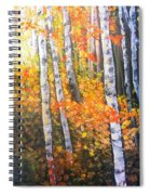 Autumn Glow Spiral Notebook