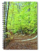 Autumn Gold 3 Spiral Notebook