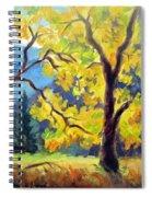 Autumn Gold Yosemite Valley Spiral Notebook