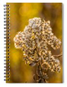 Autumn Goldenrod And A Poser Spiral Notebook