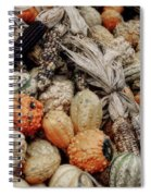 Autumn Gourds 2 Spiral Notebook