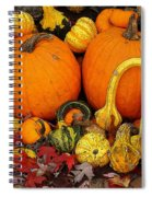 Autumn Harvest 5 Spiral Notebook