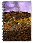 Autumn Hillside Spiral Notebook