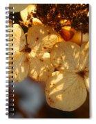 Autumn Hydrangeas I V Spiral Notebook