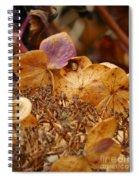 Autumn Hydrangeas V Spiral Notebook