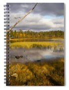 Autumn In Finland Near Inari Spiral Notebook