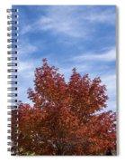 Autumn In Glenwood Canyon - Colorado Spiral Notebook