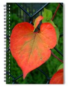 Autumn In July Spiral Notebook