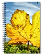 Autumn In Lyme Regis Spiral Notebook