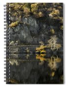 Autumn In The Lake Spiral Notebook