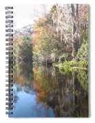 Autumn In A Swamp Spiral Notebook