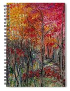 Autumn In The Woods Spiral Notebook