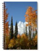 Autumn In Utah Spiral Notebook