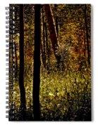 Autumn In Vail - Colorado Spiral Notebook