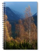 Autumn Into Winter - Cairngorm Mountains Spiral Notebook