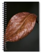 Autumn Is Back Spiral Notebook