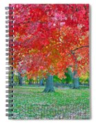 Autumn In Central Park Spiral Notebook