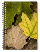 Autumn Is Coming 1 Spiral Notebook