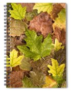 autumn is coming 5 - A carpet of autumn color leaves  Spiral Notebook