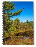 Autumn Lake 4 Spiral Notebook