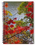 Autumn Lake Spiral Notebook