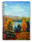 Autumn Landscape Quebec Red Maples And Blue Spruce Trees Spiral Notebook