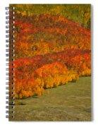 Autumn Lava Flow Spiral Notebook