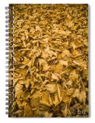 Autumn Leaf Background Spiral Notebook