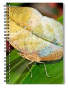 Autumn Leaf Butterfly Spiral Notebook