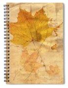 Autumn Leaf In Grunge Style Spiral Notebook