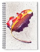 Autumn Leaf On Fire Spiral Notebook
