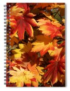 Autumn Leaves 09 Spiral Notebook