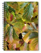 Autumn Leaves 79 Spiral Notebook