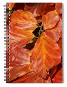 Autumn Leaves 80 Spiral Notebook