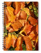 Autumn Leaves 82 Spiral Notebook