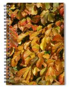 Autumn Leaves 83 Spiral Notebook